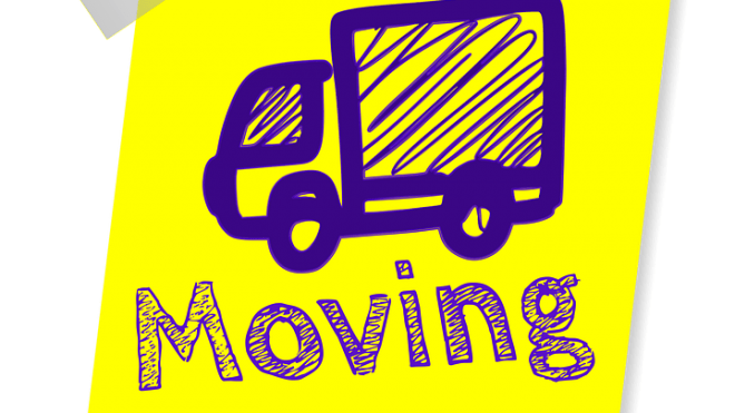 Dallas Moving TX: how transport pets