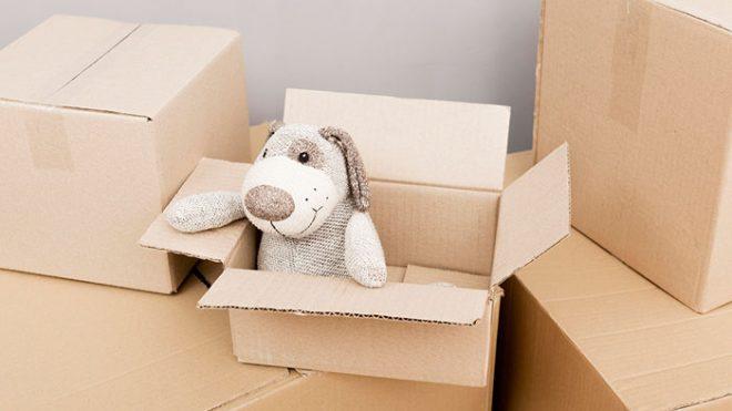 Moving boxes Dallas