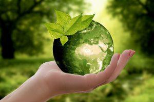 Eco Movers Dallas services
